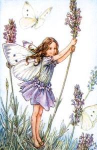 Flower Fairy Lavender